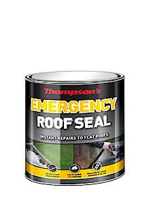 Thomp Emerg. Roof Seal Blk 2.5L