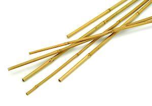 Bamboo Cane Pk10 8Ft 2.4M 76201