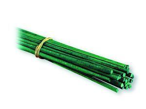 Flower Stick Pk20 18 76120