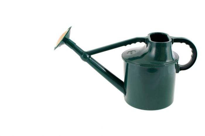 Traditional Watering Green Can