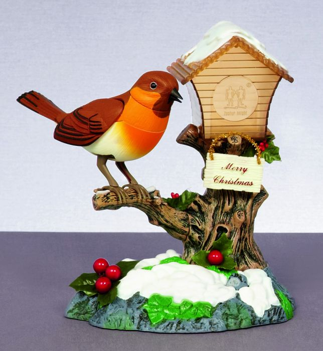 Robin Bird On Bird House Singing
