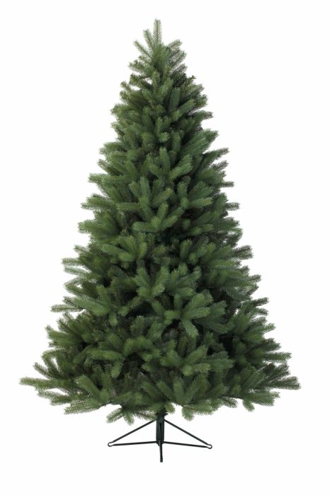 California Fir Tree Green
