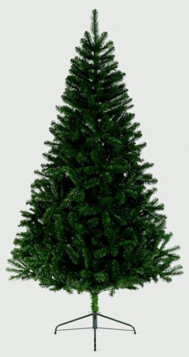 Woodcote Spruce