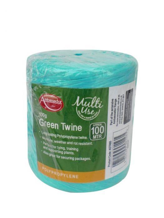 Ambassador Green Poly Twine Spool 100Gm/150M