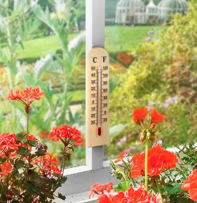 Ambassador Wooden Thermometer 8'' (20Cm)