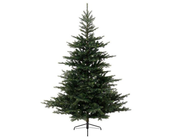 Grandis Green Fir Tree