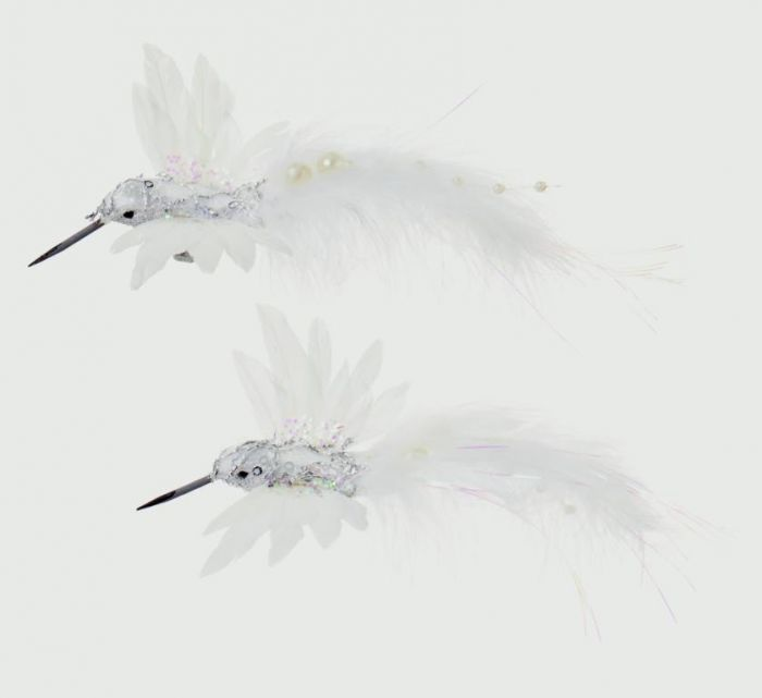 Humming Bird Clip On Card
