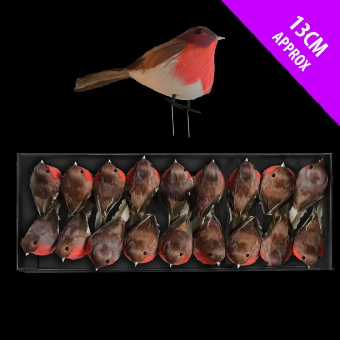 Robins In Display Tray