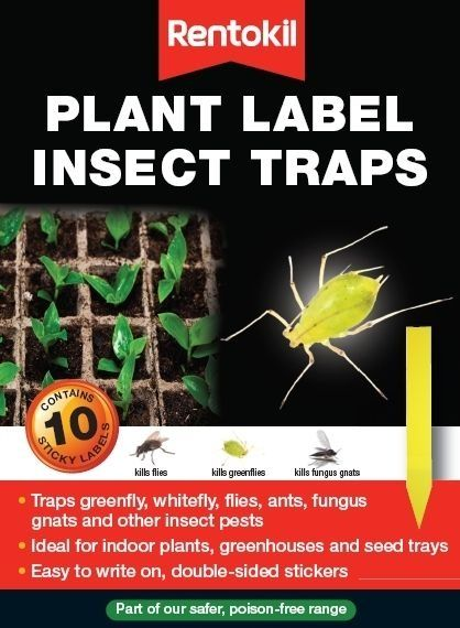 Rentokil Plant Label Insect Traps 10 Pack