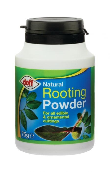 Doff Natural Rooting Powder 75G