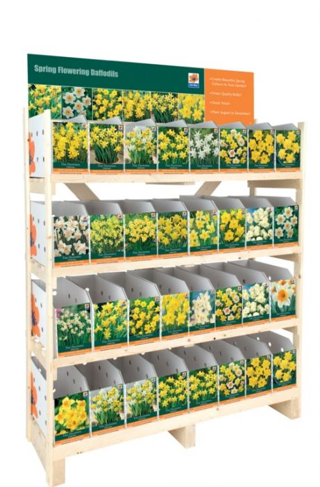 Daffodil Collection