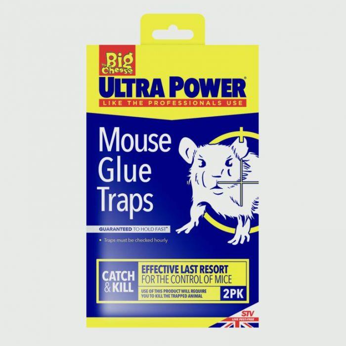 The Big Cheese Rtu Mouse Glue Traps Twinpack