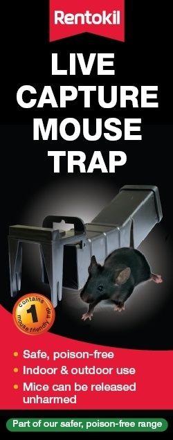 Rentokil Live Capture Mouse Trap Boxed