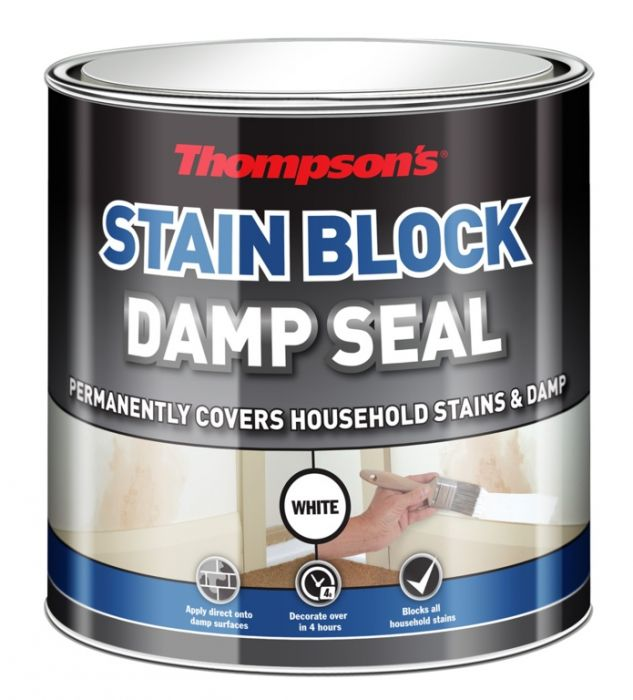 Thompson's Stain Block Damp Seal 250Ml
