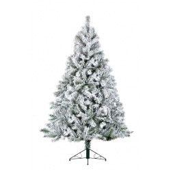 Snowy Toronto Pine Tree