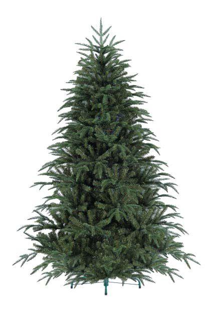 Victoria Pine Tree
