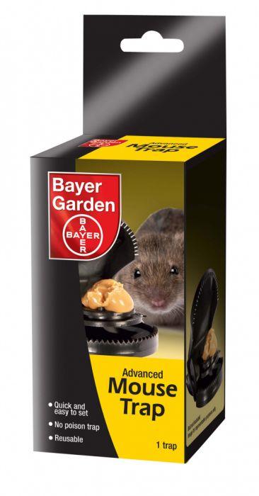 Bayer Advanced Mouse Trap