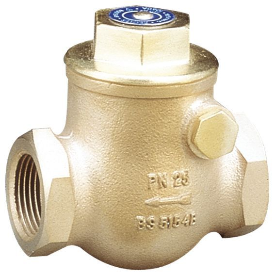 Pegler Yorkshire 1060A Swing Check Valve (Bspt) 50Mm Bronze