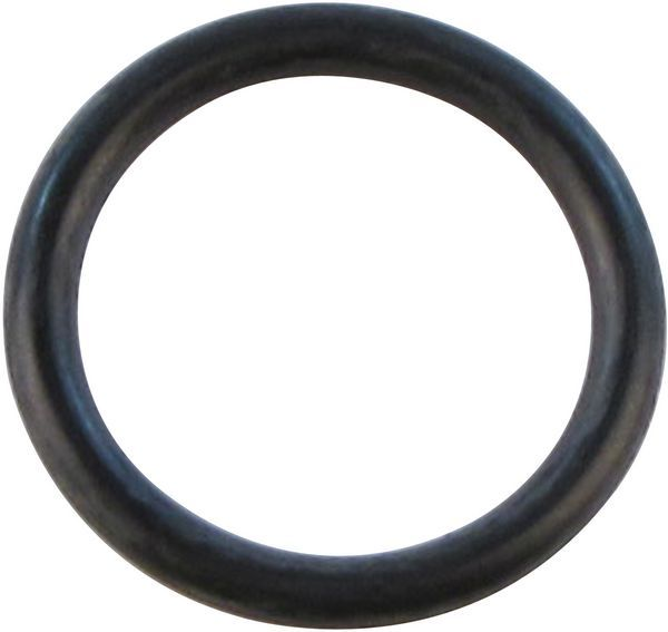 Glow-Worm 0020014175 Packing Ring