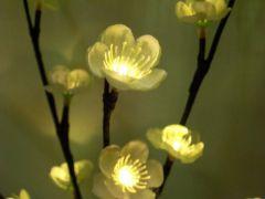 White Led Flower Lights