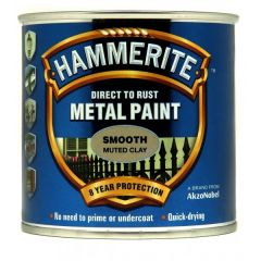 Direct To Rust Metal Paint Smooth Muted Clay 250Ml