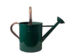 Metal 9Lt Watering Can