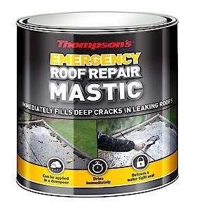 Thompsons Emergency Roof Repair Mastic 750Ml