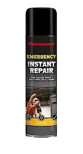 Thompsons Emergency Instant Repair Aerosol 450G