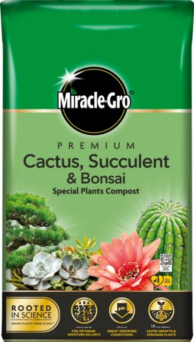 Miracle-Gro Cactus Succulent & Bonsai Compost 6L