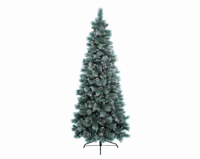 Green/White Frosted Norwich Pine