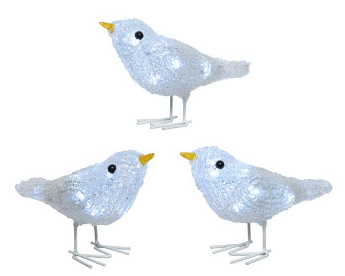 Led Acrylic Birds