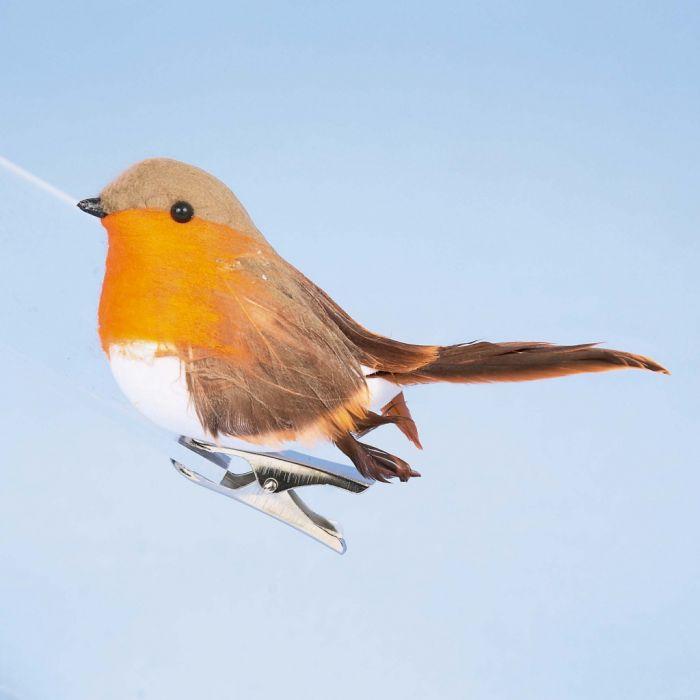 Robin On Clip