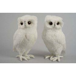 Cotton Owl White
