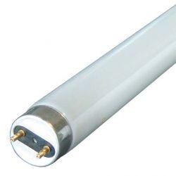 Eveready 5Ft Triphosphor Tube 840 58w