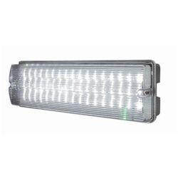 Dencon IP65 LED Bulkhead Maintained