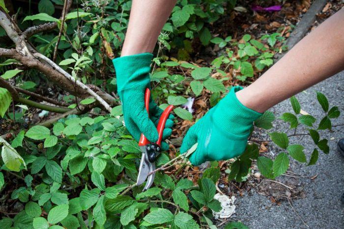 Ambassador Mens Latex Heavy Duty Glove