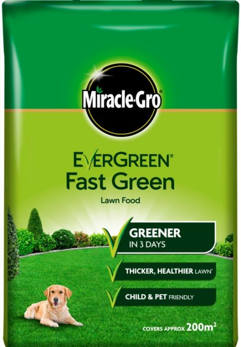 Miracle-Gro Evergreen Fast Green 200m2 Bag