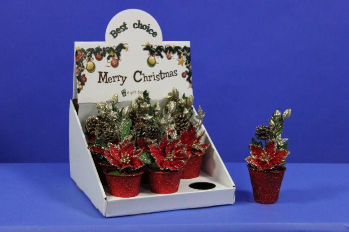 Poinsettia Pot Display