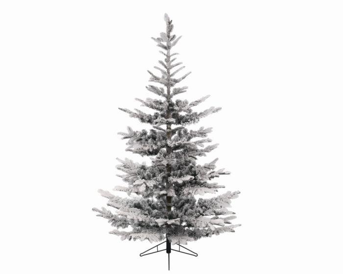 Snowy Spruce Tree