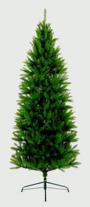 Slim California Tree