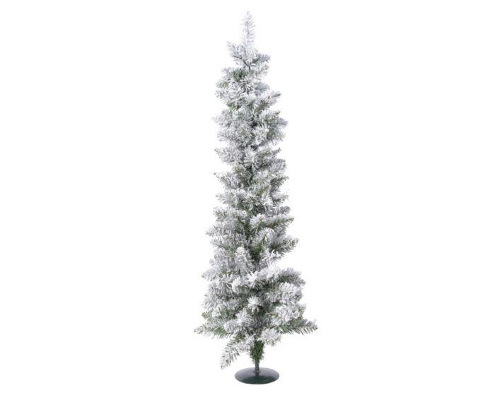 Green/White Snowy Vienna Pine