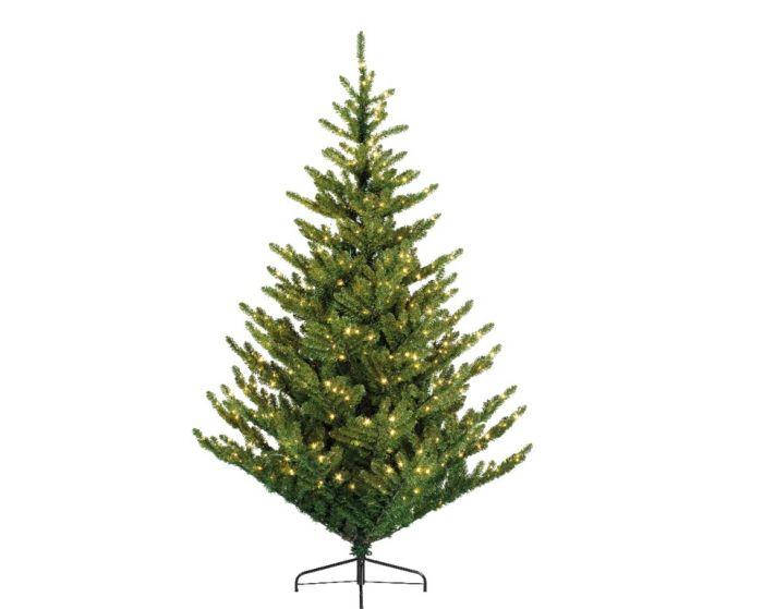 Green Aspen Spruce Tree