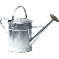 Ambassador Galvanised Watering Can 2 Gallon