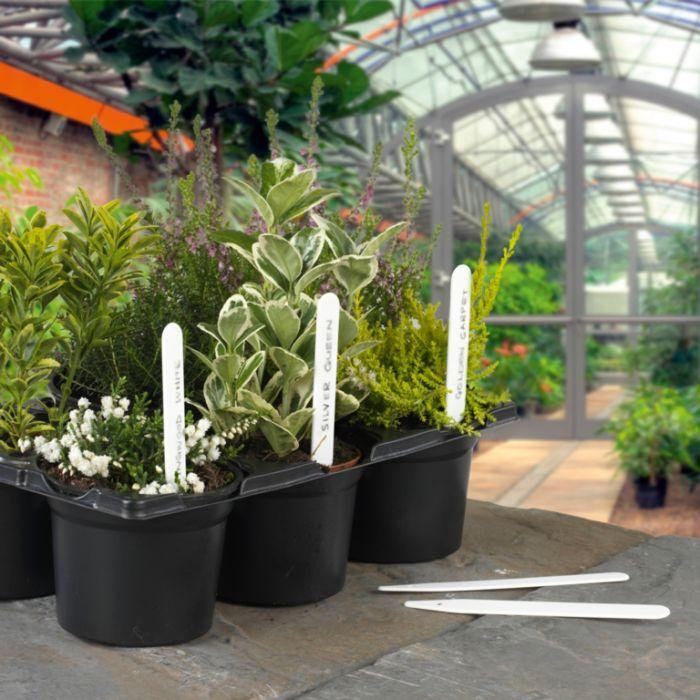 Ambassador Plant Labels Pack 100 5 (10Cm)