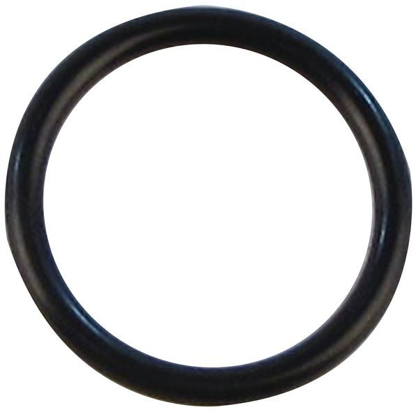 Ideal 173819 o-ring gasket 16 x 1.9