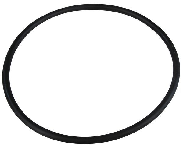 Worcester 87228801750 o ring (10x)