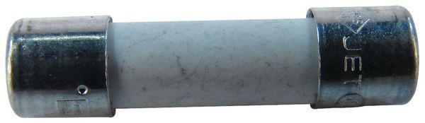 Baxi Potterton 8801443 fuse 1a 250v T 20mm