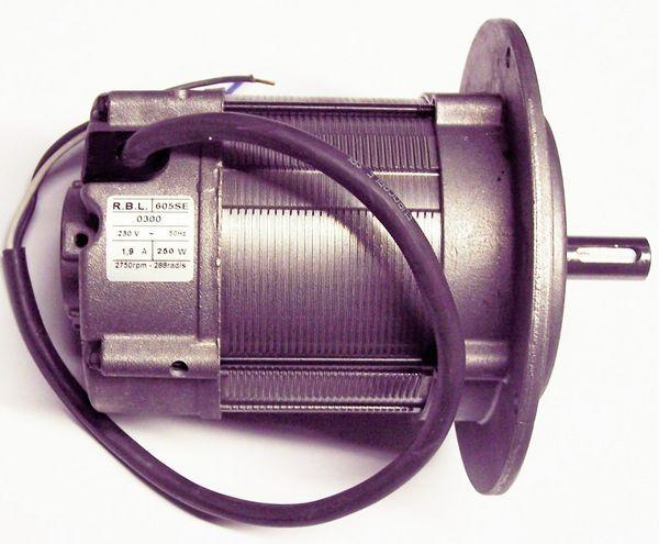 Riello 3003768 motor (652-T1)