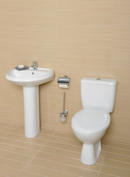 Roca Valor toilet seat and cover with hinges White/Stainless Steel