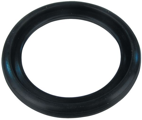 Aquajet AJRR021 spray gun rubber ring